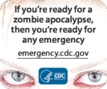 zombie apocalypse paragraph