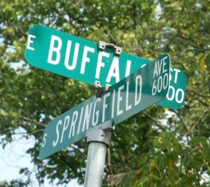 https://www.thehorrorzine.com/Odd/StreetNames/108307-large-04_BuffaloSpringfield-weird-road-signs.jpg